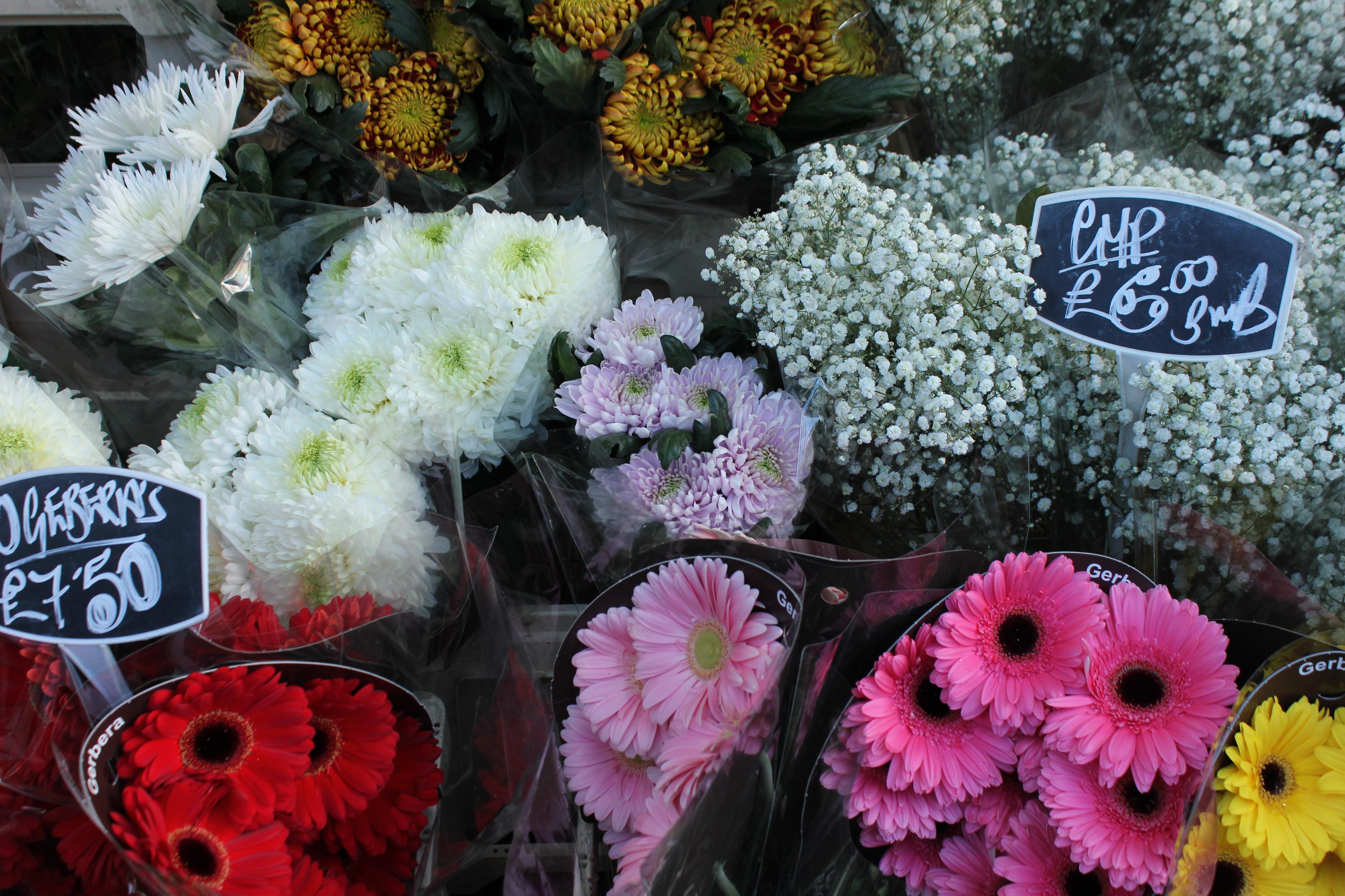 Columbia Roadin kukkamarkkinat: sunnuntai kasvien ja hipstereiden parissa