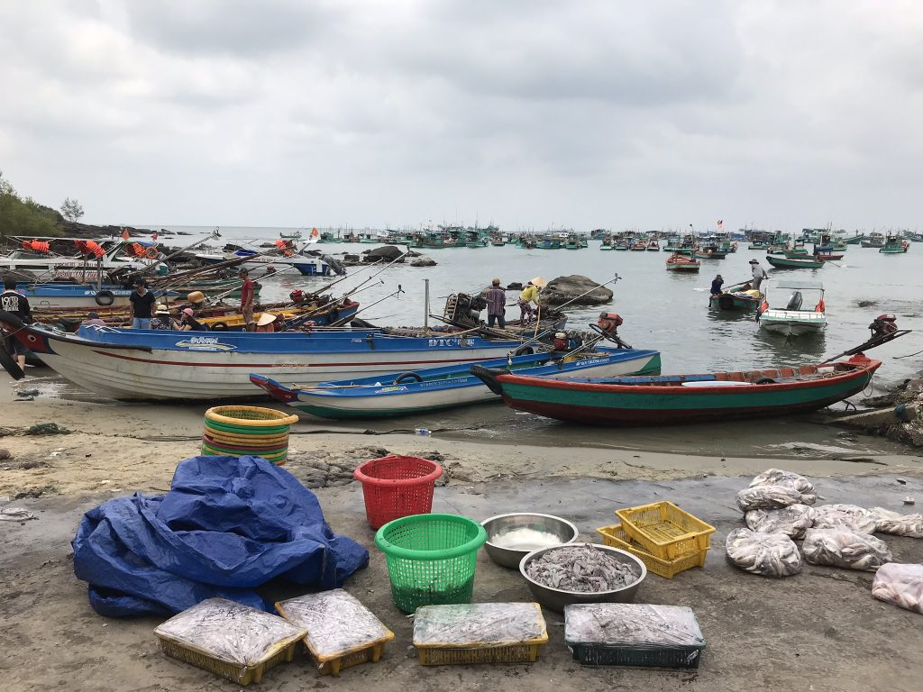 Fishing harbour in Phu Quoc