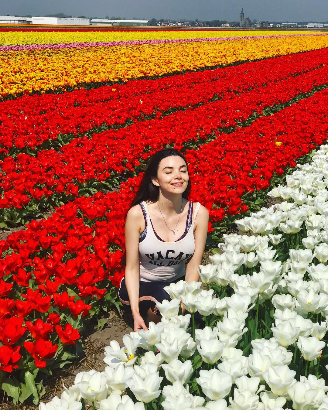 In Search of Tulips: Cycling the Dutch Flower Fields