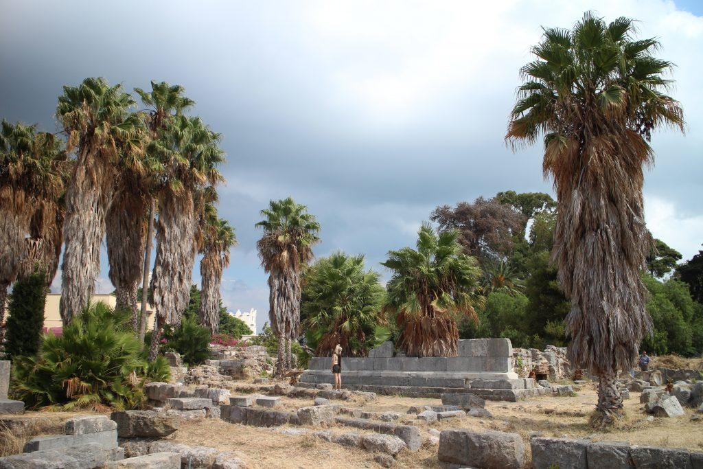 Palmupuita ja antiikin ajan raunioita
