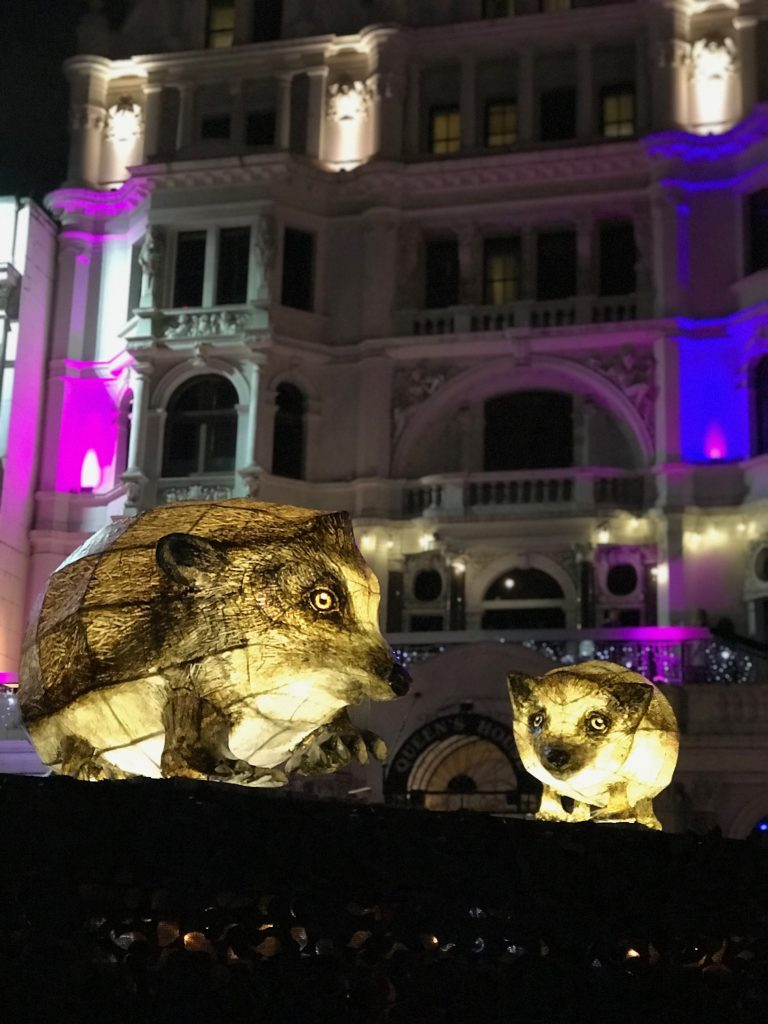 Cute animals at Lumiere London