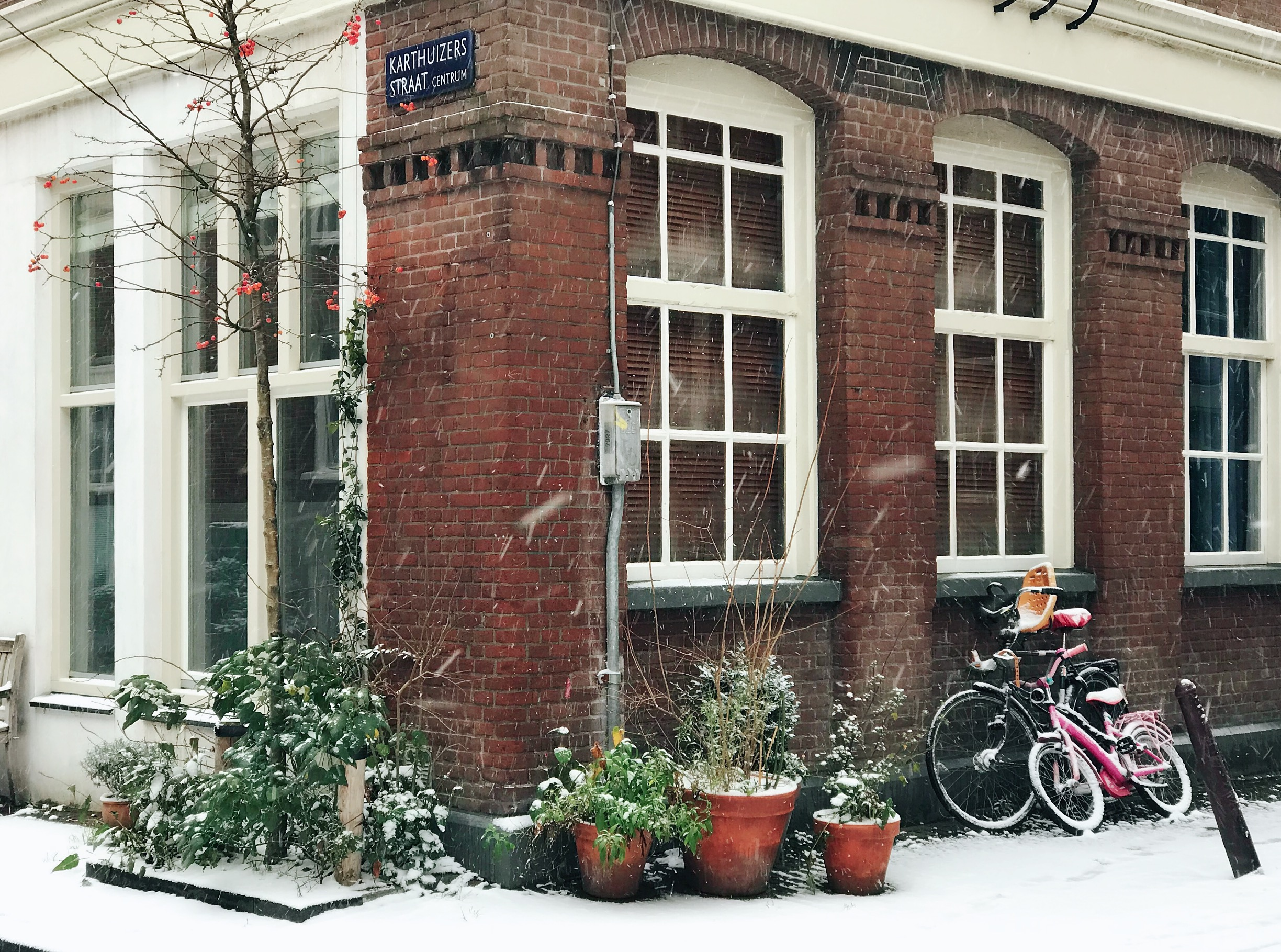 Stop the Press: There's Snow in Amsterdam!